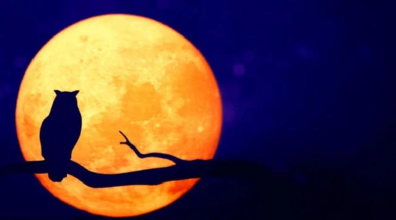 Азарей: Ретрограден Плутон пали бунтове и води към промени